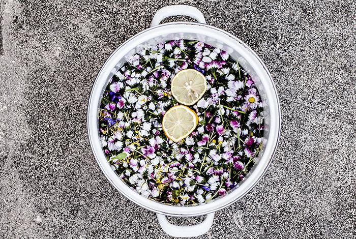 Bild von Blüten im Topf