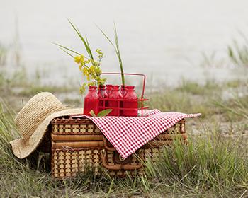 350x280_picknick