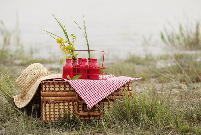 700x470_picknick